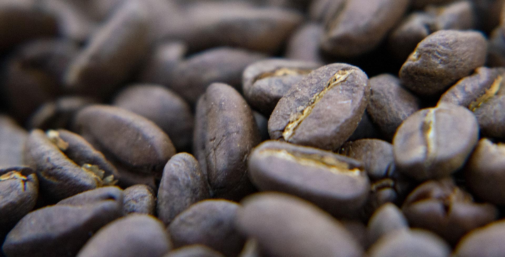 La cultura del Café